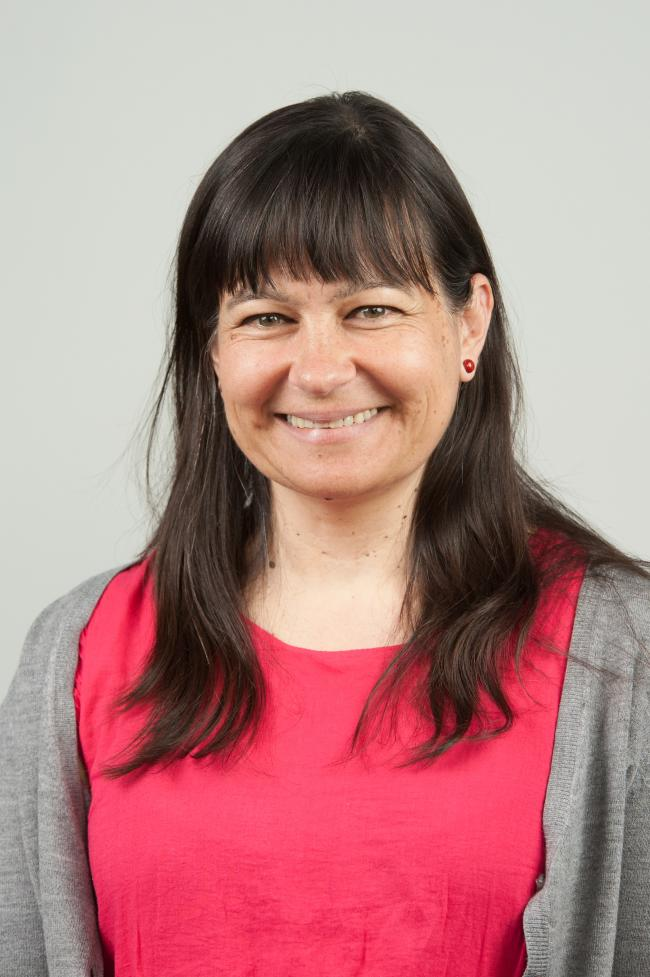 Stroud District Council leader Doina Cornell