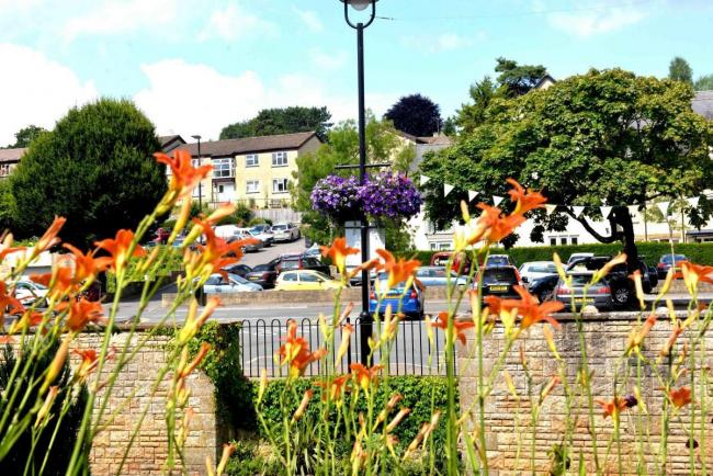 Flowers in Nailsworth