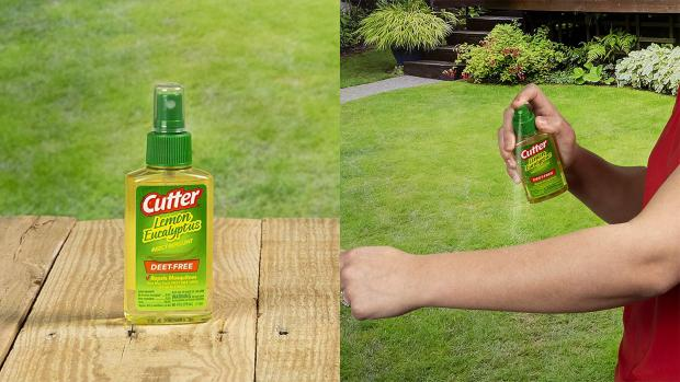 Stroud News and Journal: Ditch the horrible smelling insect repellents for one that's fragrant and offers up to six hours of protection. Credit: Cutter