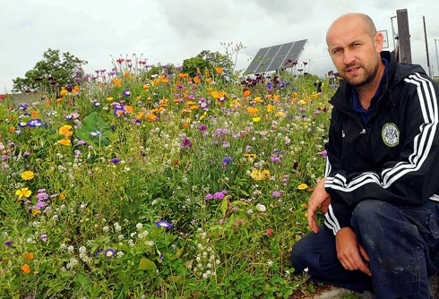 Forest Green groundsman Stewart has  green fingers   Picture: Carl Hewlett