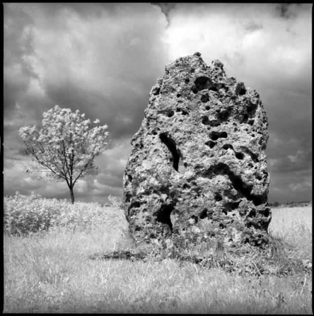 Long Stone, Minchinhampton by David Corio, whose celebrated work will go on display at an exhibition in Stroud next month