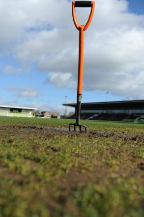 The New Lawn pitch today, Friday     Picture: Tom Wren