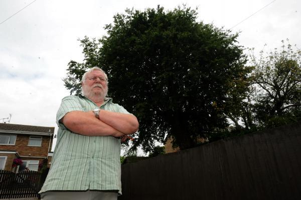 Cashes Green Road resident Ron Greenway, 77, is calling for a large beechbeach tree to be cut down as he fears it could come down and damage local properties – including his own (8227555)