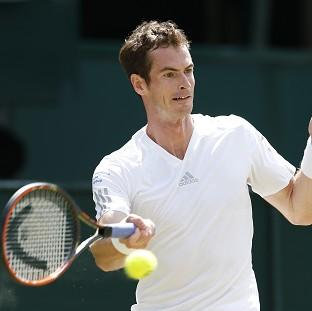 Andy Murray, pictured, was