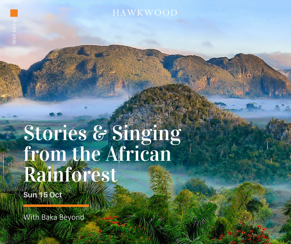 Stories and Singing from the African Rainforest - Baka Beyond