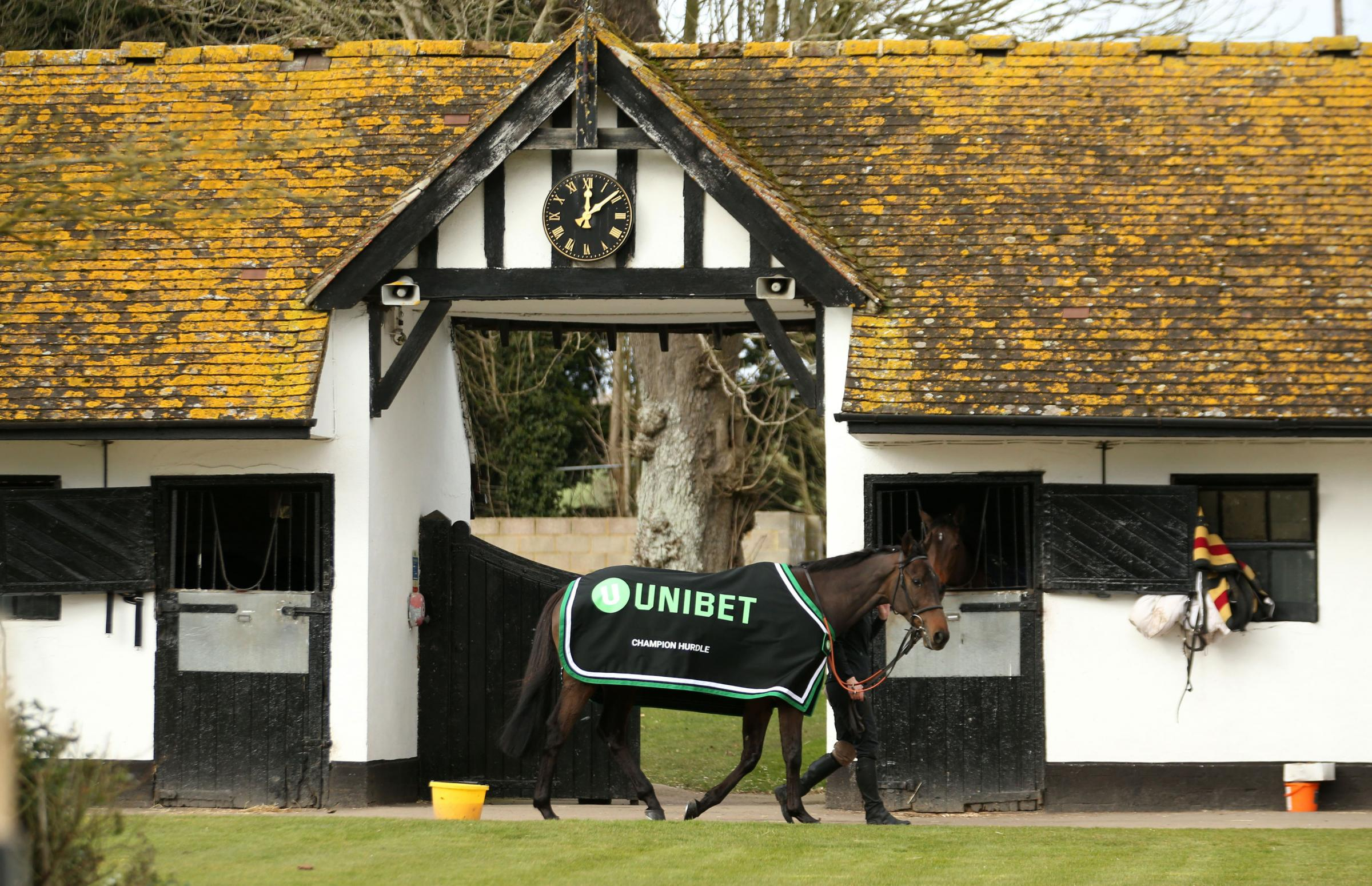 Buveur D'Air at his stables