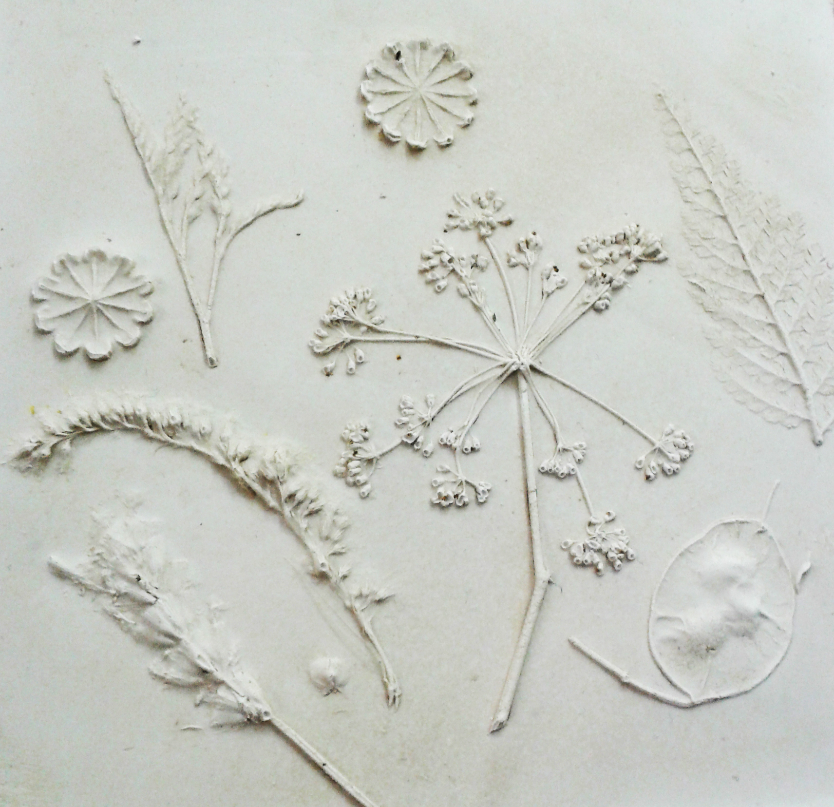 *Summer School* - Botanical Wall Plaques with Emily Joy