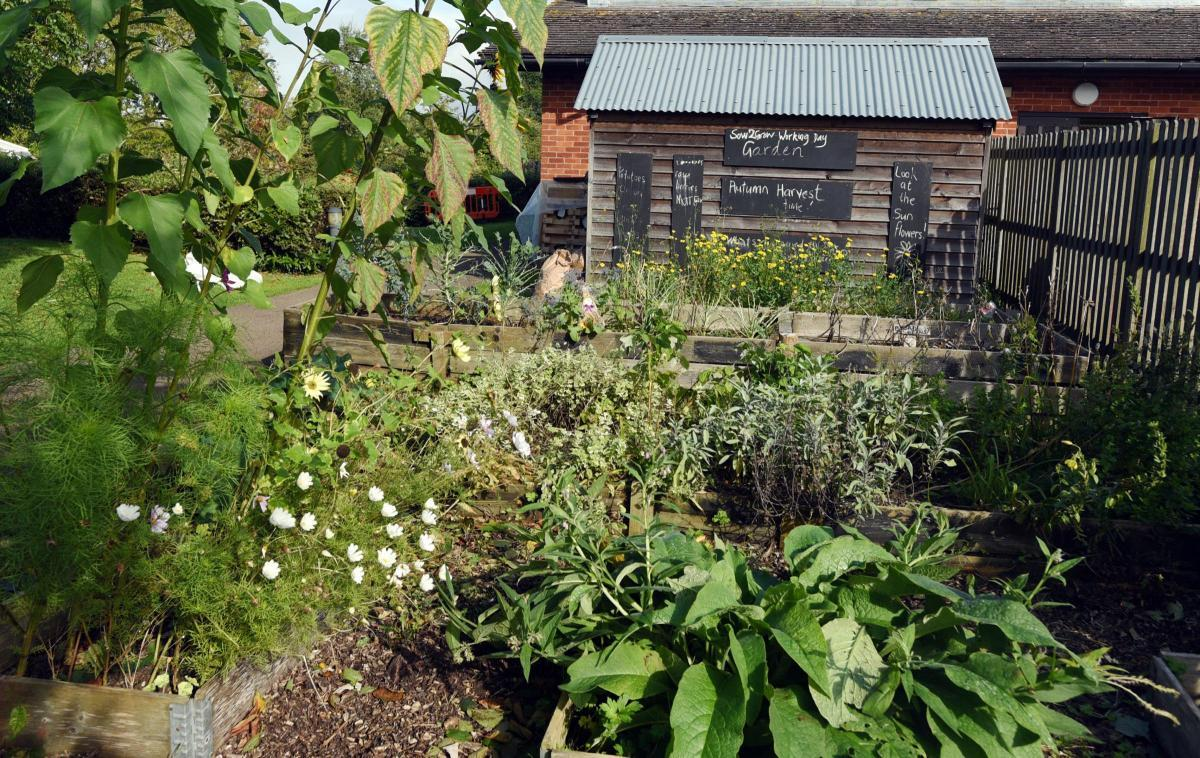 Stroud Valleys Project will host a gardening and marketing project