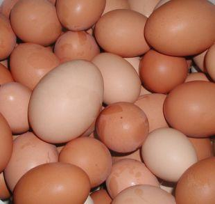 Stroud News and Journal: Shopkeepers ban youngsters from buying eggs
